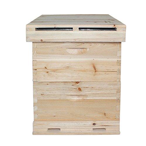 Rongzhan Bauernhof Hause Haustier Nutztier Tier Bienen Zucht Züchten Bienenzucht Imkerei Ausrüstung Zubehörteil Beekeeping Bienenkasten Bienenkorb Bienenstock doppelte Schichten Spießtannenholz